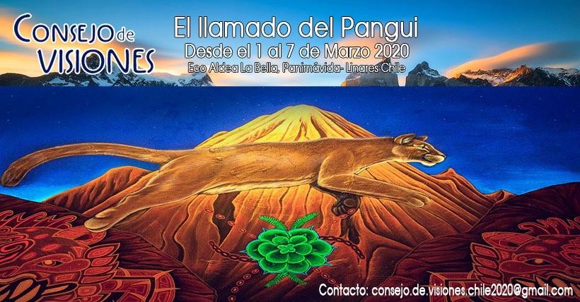 """Consejo de Visiones """"Llamado del Pangui"""" - La bella eco aldea"""