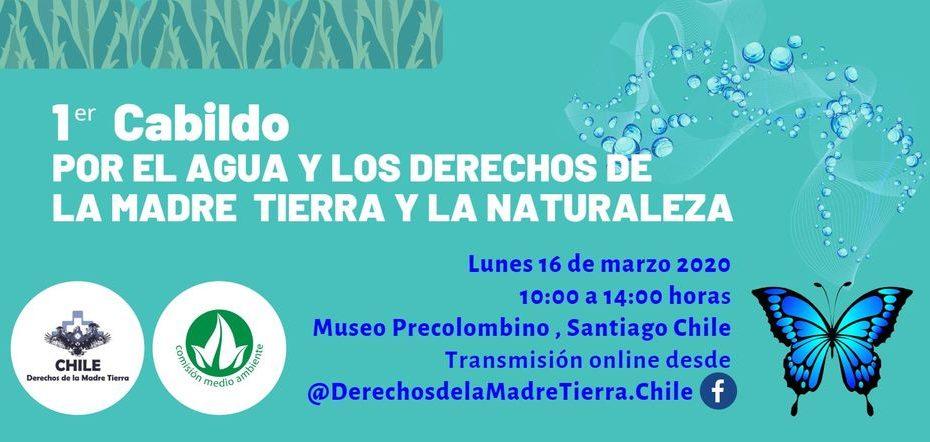 1 er Cabildo por el Agua y los DMT y la Naturaleza Museo Chileno de Arte Precolombino, Santiago - Chile